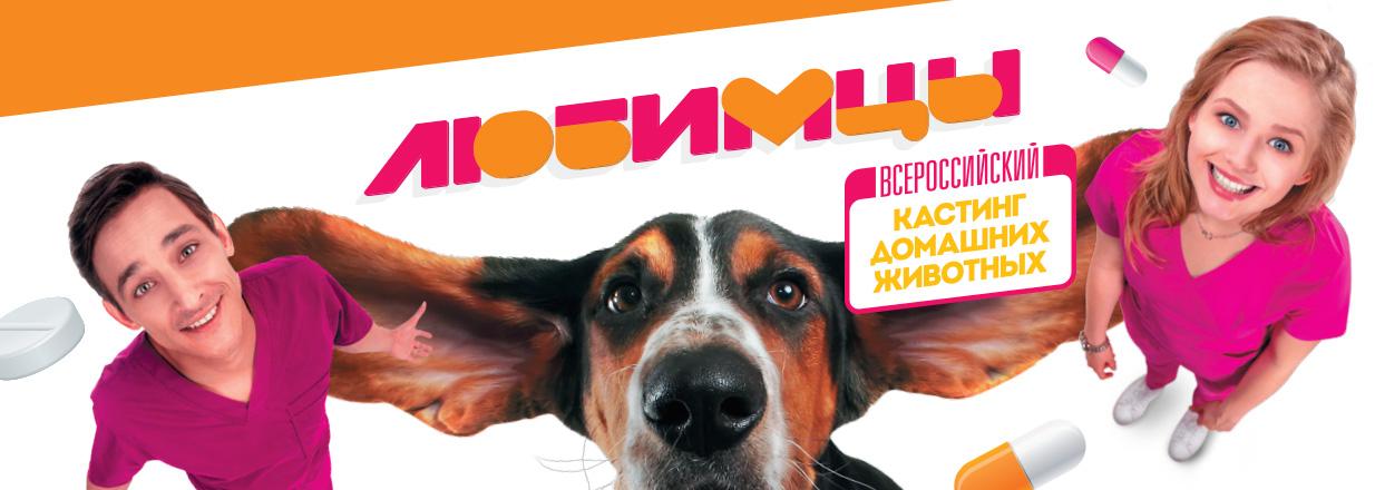 Кастинг домашних животных