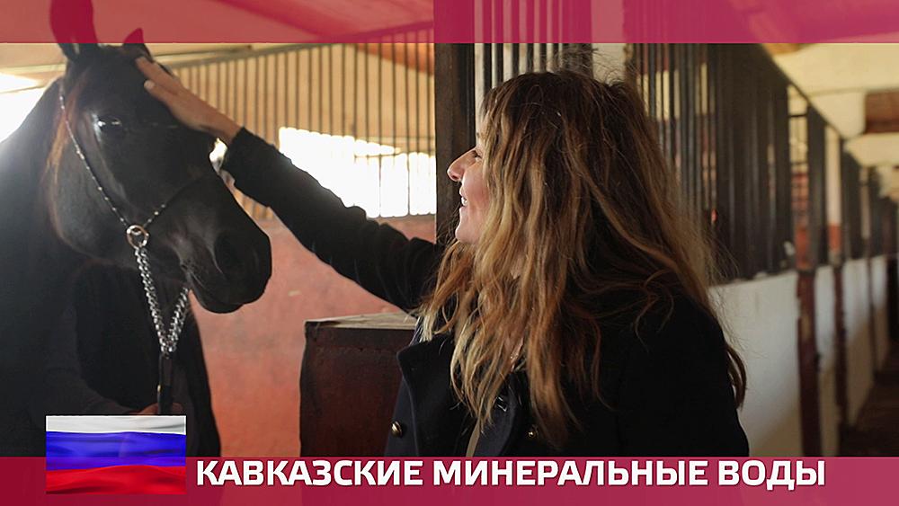 Вольт на ютубе на русском смотреть запись